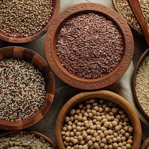 Cereali / frutta secca / bacche / semi